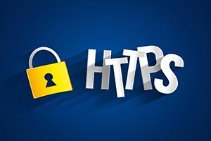 What is encrypted by HTTPS?